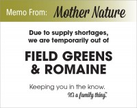 Field Greens & Romaine Shortage - PDF