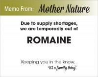 Romaine Shortage - PDF