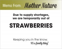 Strawberry Shortage - PDF